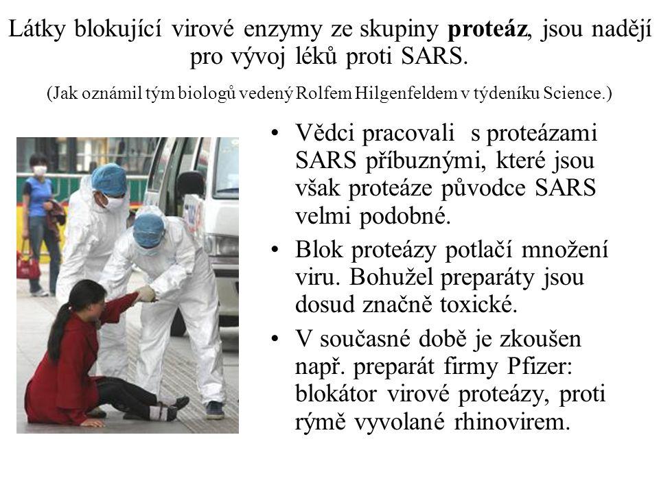 Látky blokující virové enzymy ze skupiny proteáz, jsou nadějí pro vývoj léků proti SARS.