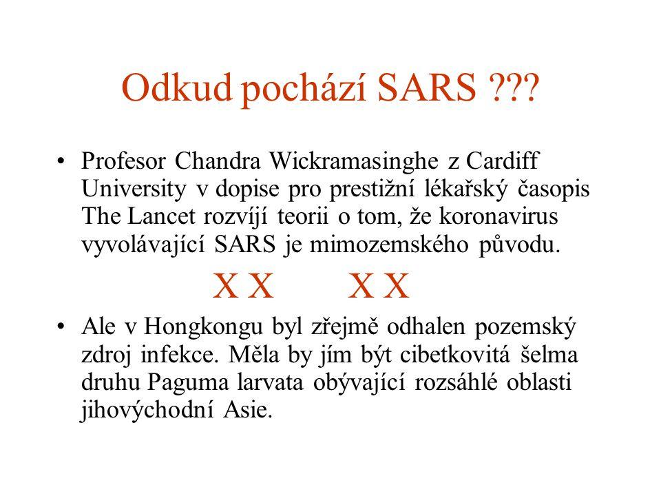 Odkud pochází SARS
