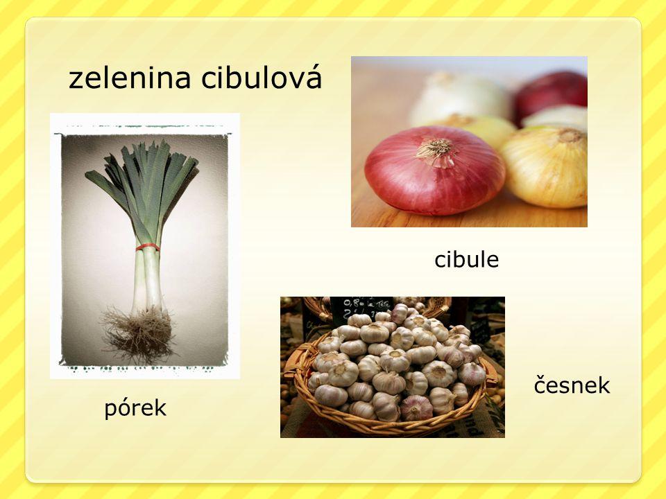 zelenina cibulová cibule česnek pórek