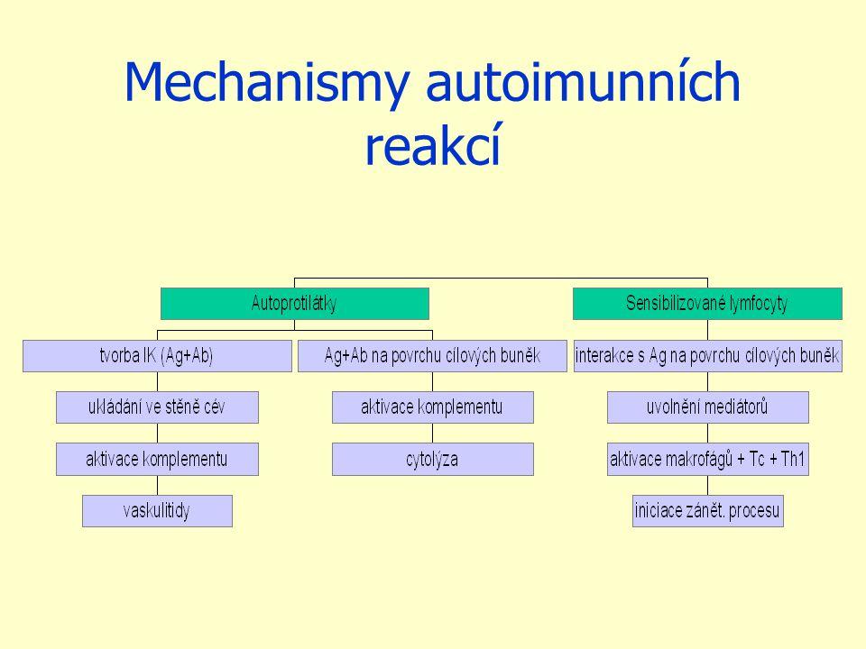 Mechanismy autoimunních reakcí
