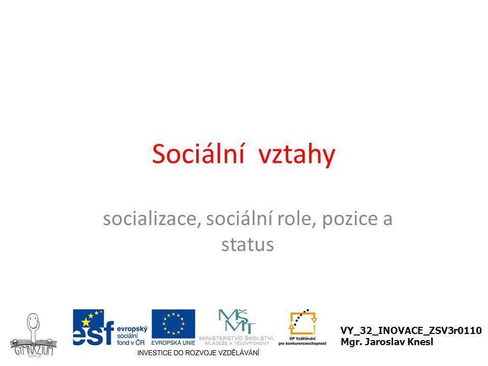 socializace, sociální role, pozice a status