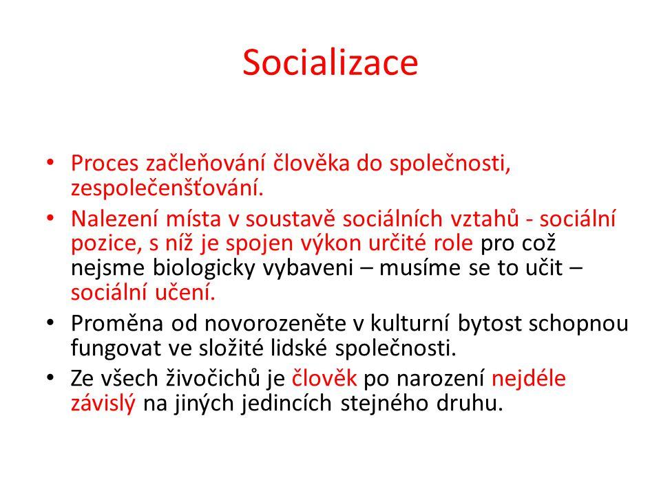 Socializace Proces začleňování člověka do společnosti, zespolečenšťování.