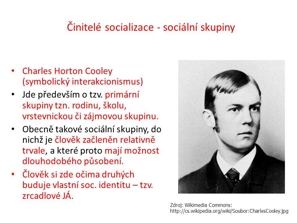 Činitelé socializace - sociální skupiny