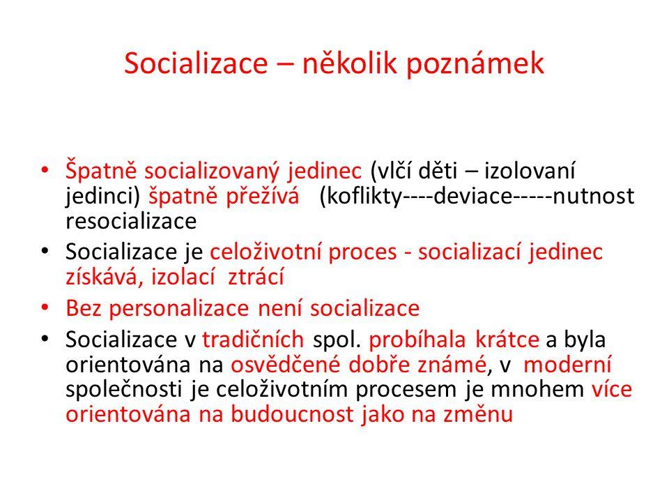 Socializace – několik poznámek