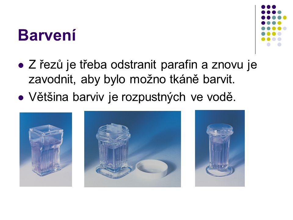 Barvení Z řezů je třeba odstranit parafin a znovu je zavodnit, aby bylo možno tkáně barvit.
