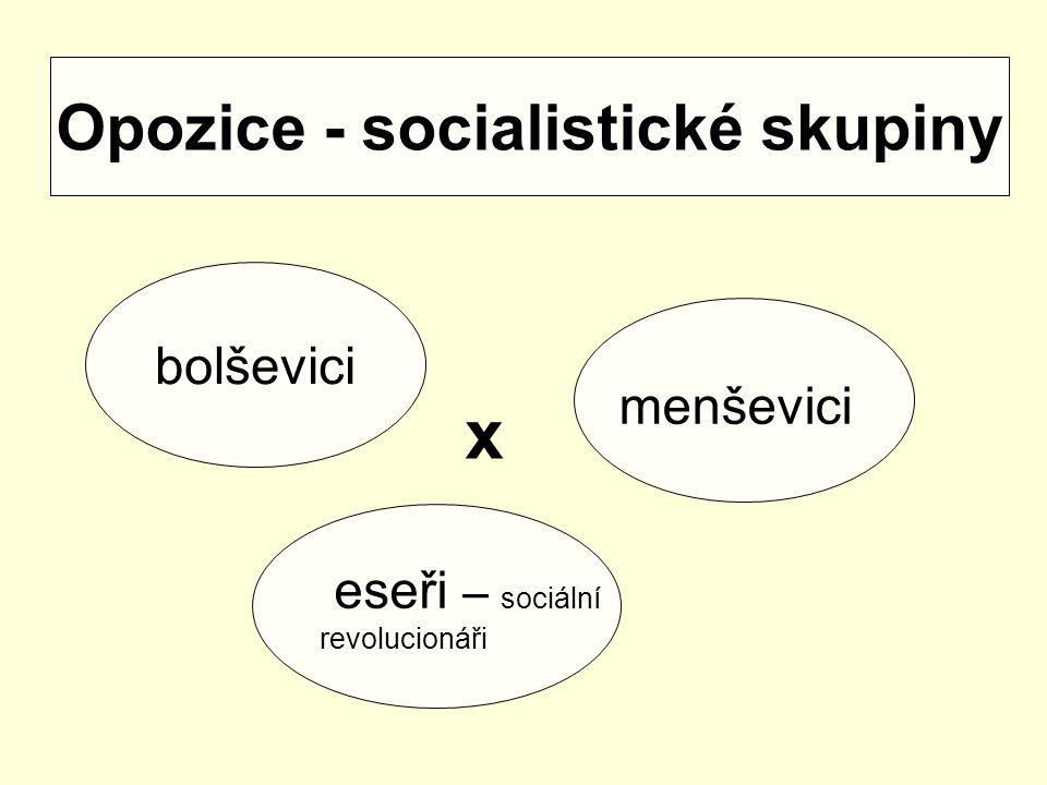 Opozice - socialistické skupiny