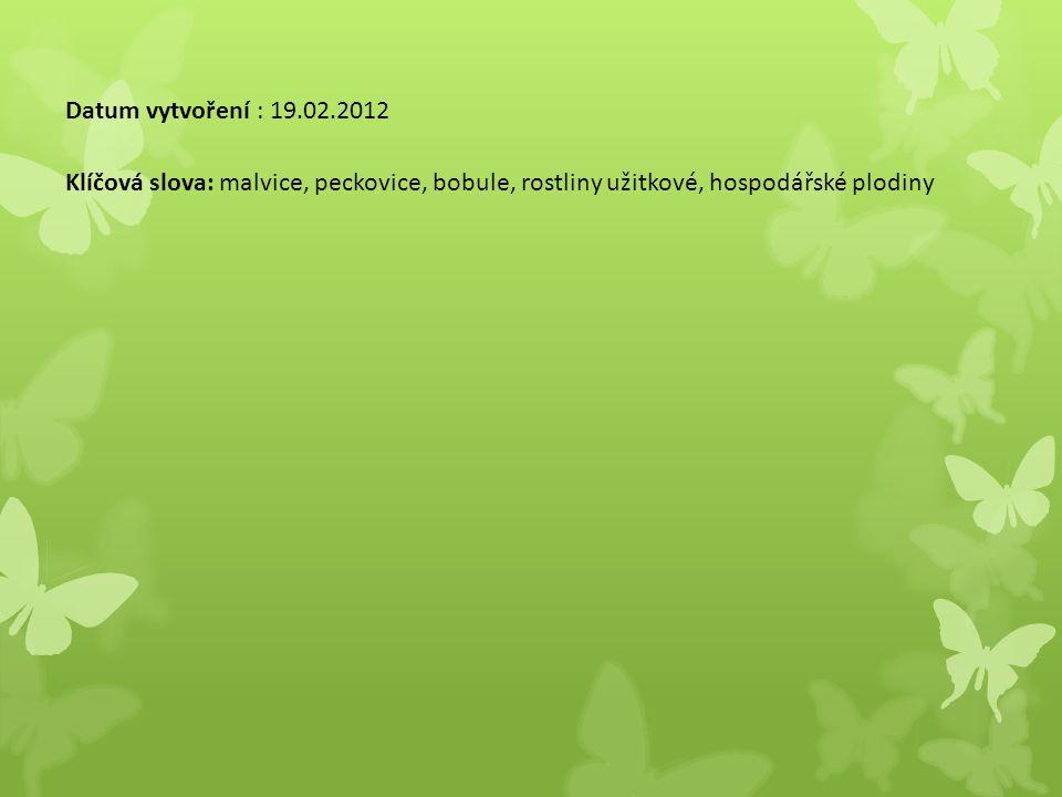 Datum vytvoření : 19.02.2012 Klíčová slova: malvice, peckovice, bobule, rostliny užitkové, hospodářské plodiny.