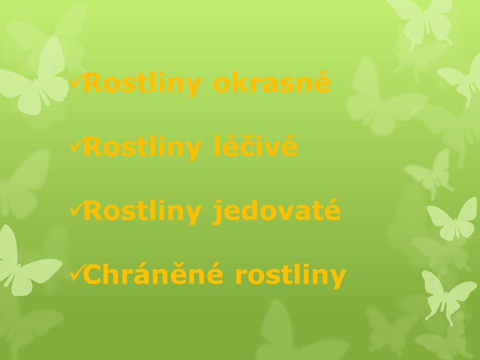 Rostliny okrasné Rostliny léčivé Rostliny jedovaté Chráněné rostliny