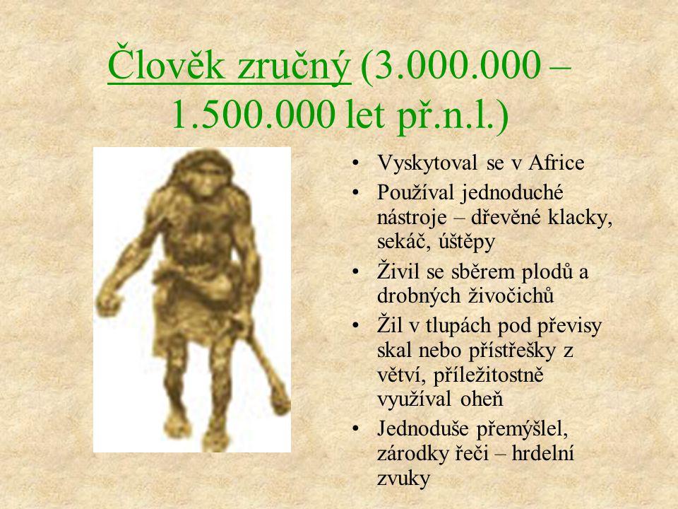 Člověk zručný (3.000.000 – 1.500.000 let př.n.l.)