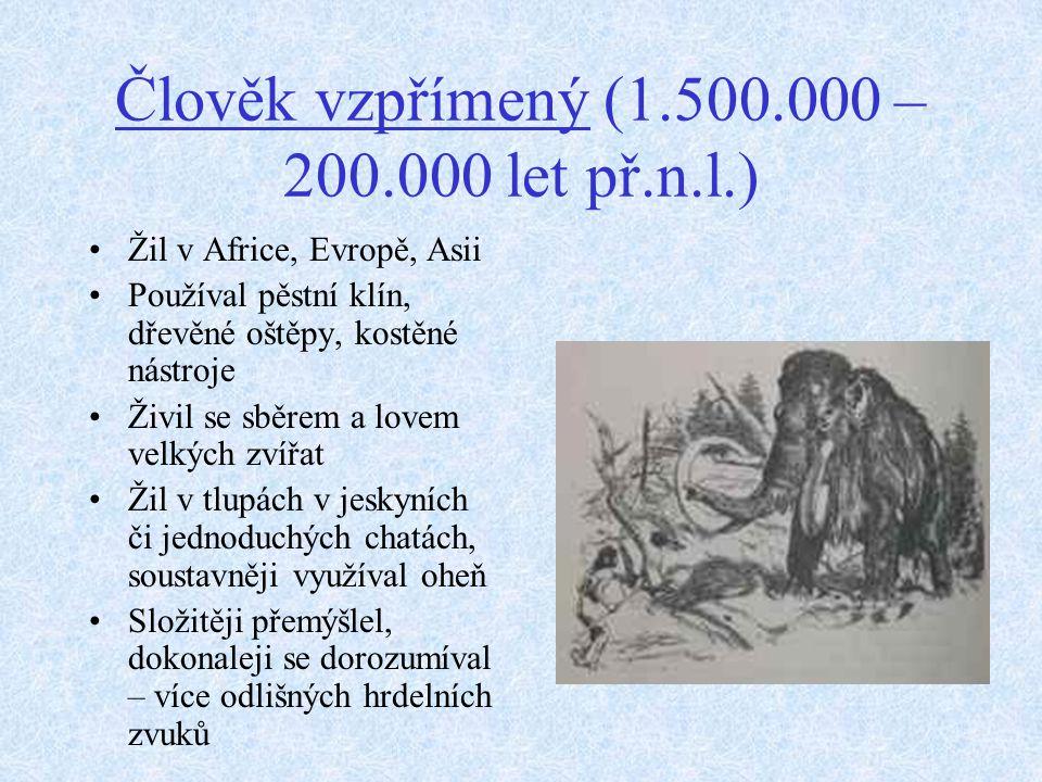 Člověk vzpřímený (1.500.000 – 200.000 let př.n.l.)