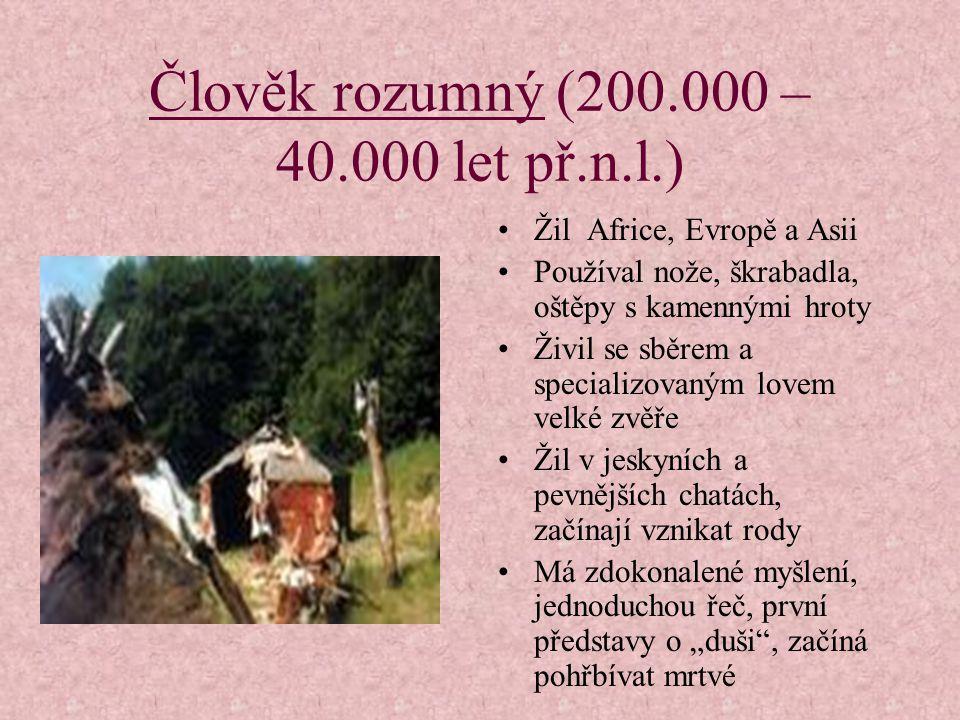 Člověk rozumný (200.000 – 40.000 let př.n.l.)