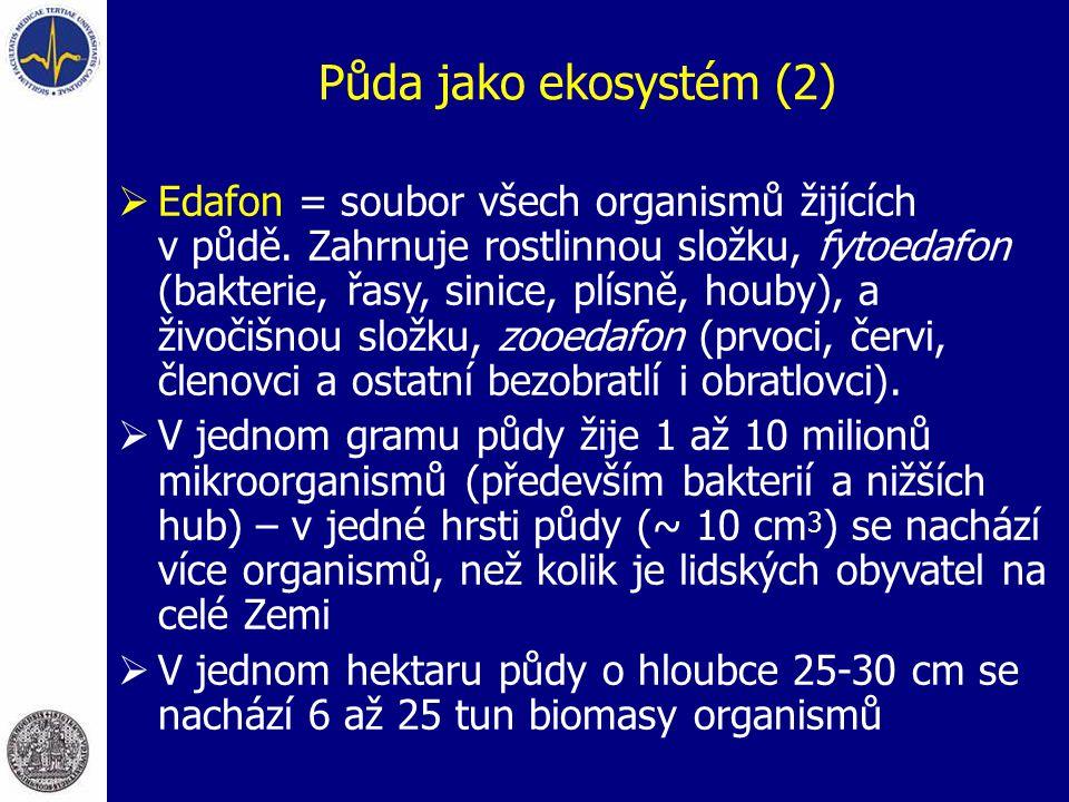 Půda jako ekosystém (2)