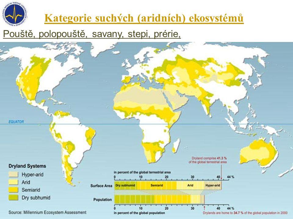 Kategorie suchých (aridních) ekosystémů