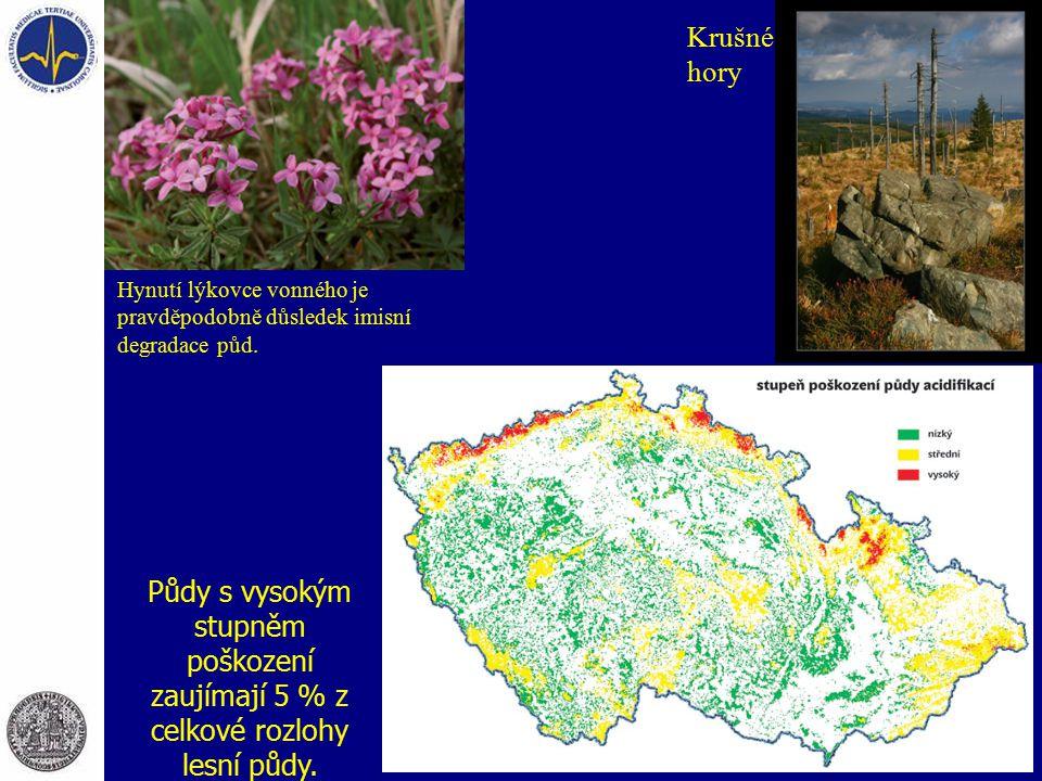 Krušné hory Hynutí lýkovce vonného je pravděpodobně důsledek imisní degradace půd.