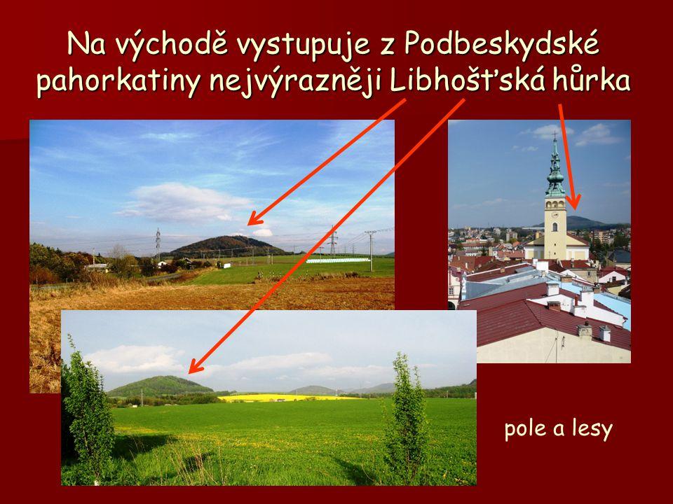 Na východě vystupuje z Podbeskydské pahorkatiny nejvýrazněji Libhošťská hůrka