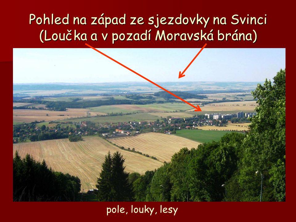 Pohled na západ ze sjezdovky na Svinci (Loučka a v pozadí Moravská brána)
