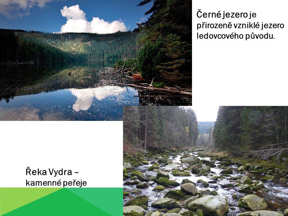 Černé jezero je přirozeně vzniklé jezero ledovcového původu.