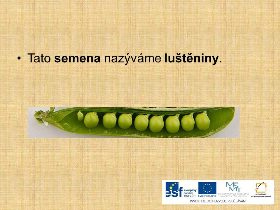 Tato semena nazýváme luštěniny.