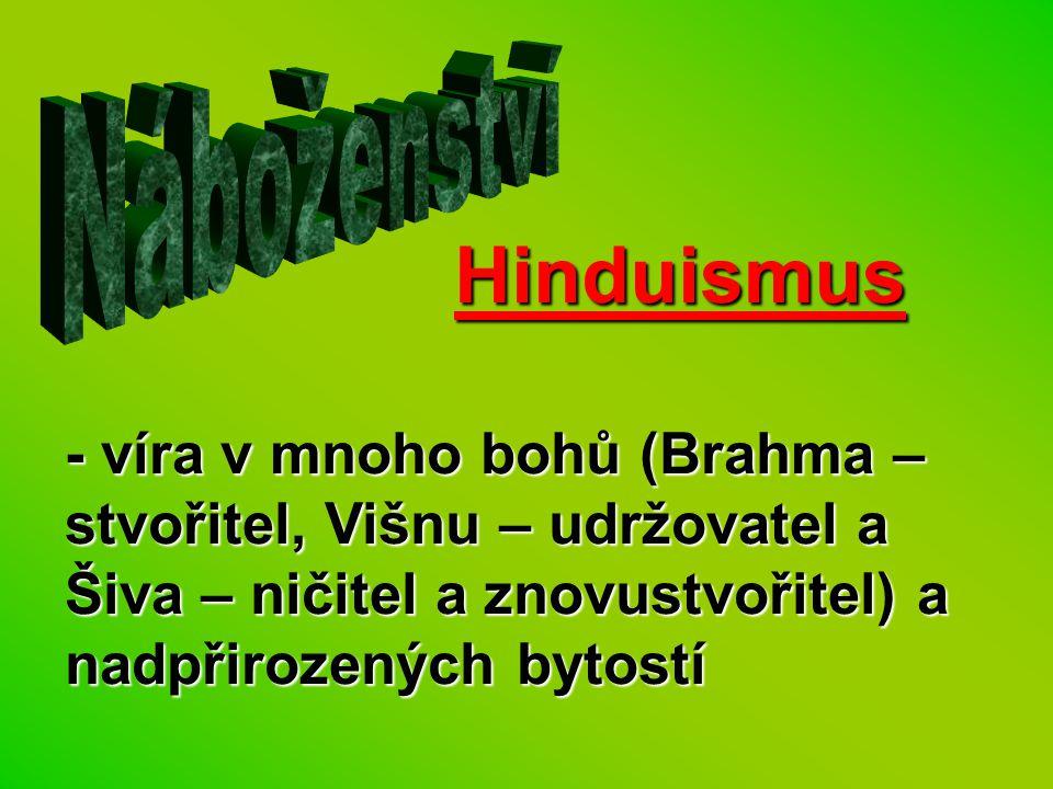 Náboženství Hinduismus.