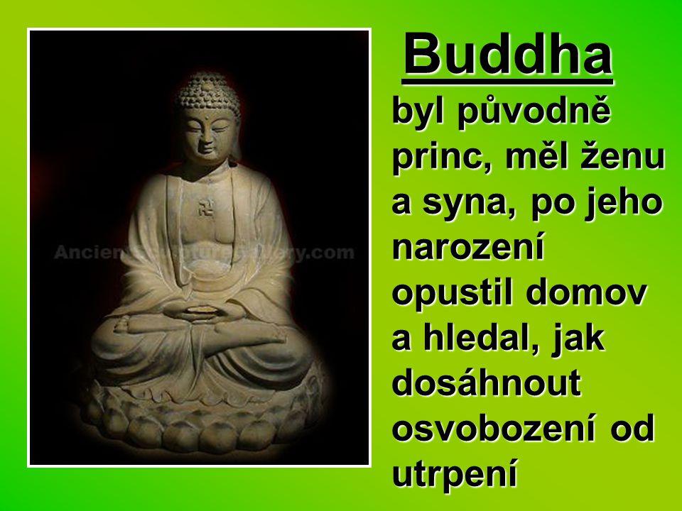 Buddha byl původně princ, měl ženu a syna, po jeho narození opustil domov a hledal, jak dosáhnout osvobození od utrpení