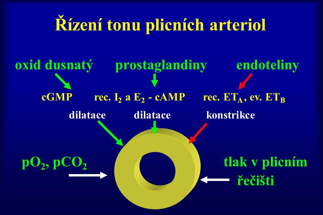 Řízení tonu plicních arteriol