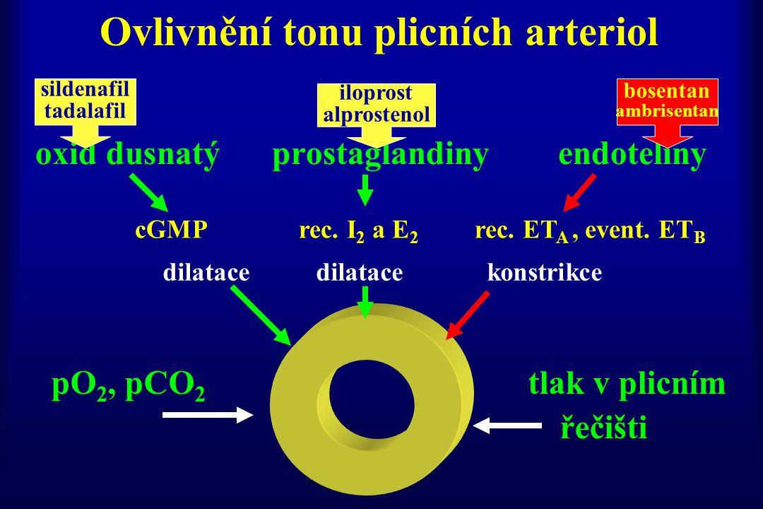 Ovlivnění tonu plicních arteriol