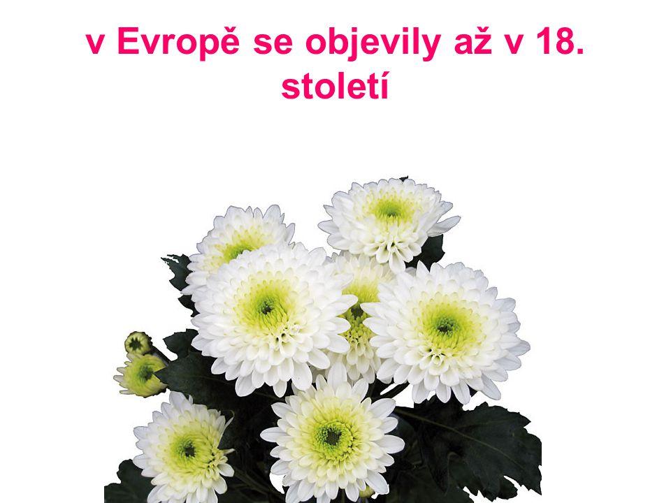 v Evropě se objevily až v 18. století