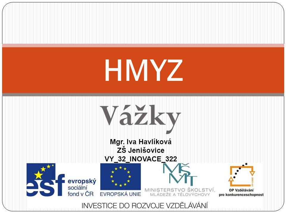 HMYZ Vážky Mgr. Iva Havlíková ZŠ Jenišovice VY_32_INOVACE_322