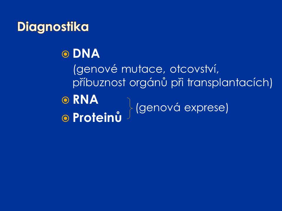 (genové mutace, otcovství, příbuznost orgánů při transplantacích) RNA