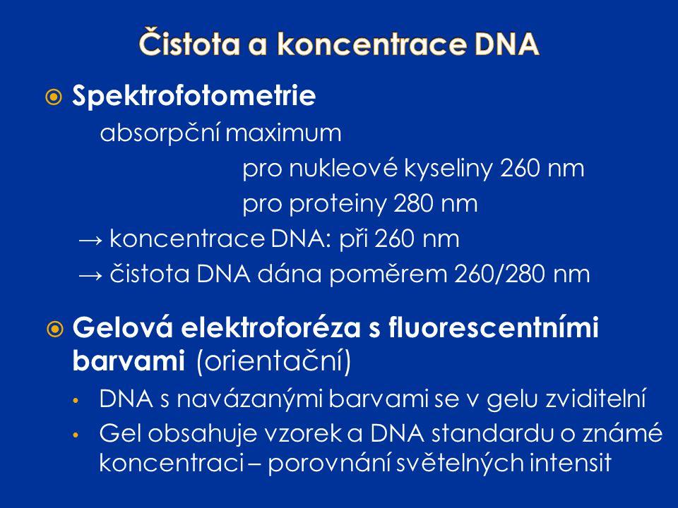 Čistota a koncentrace DNA