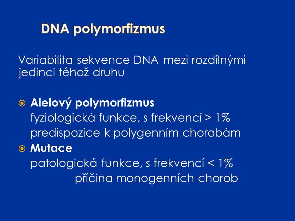 DNA polymorfizmus Variabilita sekvence DNA mezi rozdílnými jedinci téhož druhu. Alelový polymorfizmus.
