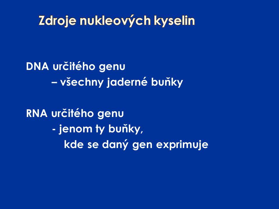 Zdroje nukleových kyselin