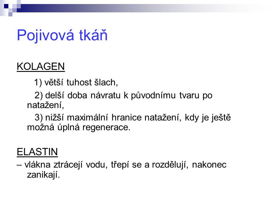 Pojivová tkáň 1) větší tuhost šlach, KOLAGEN ELASTIN
