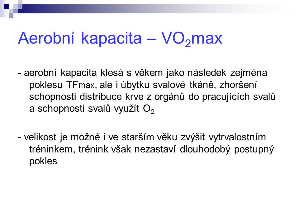 Aerobní kapacita – VO2max