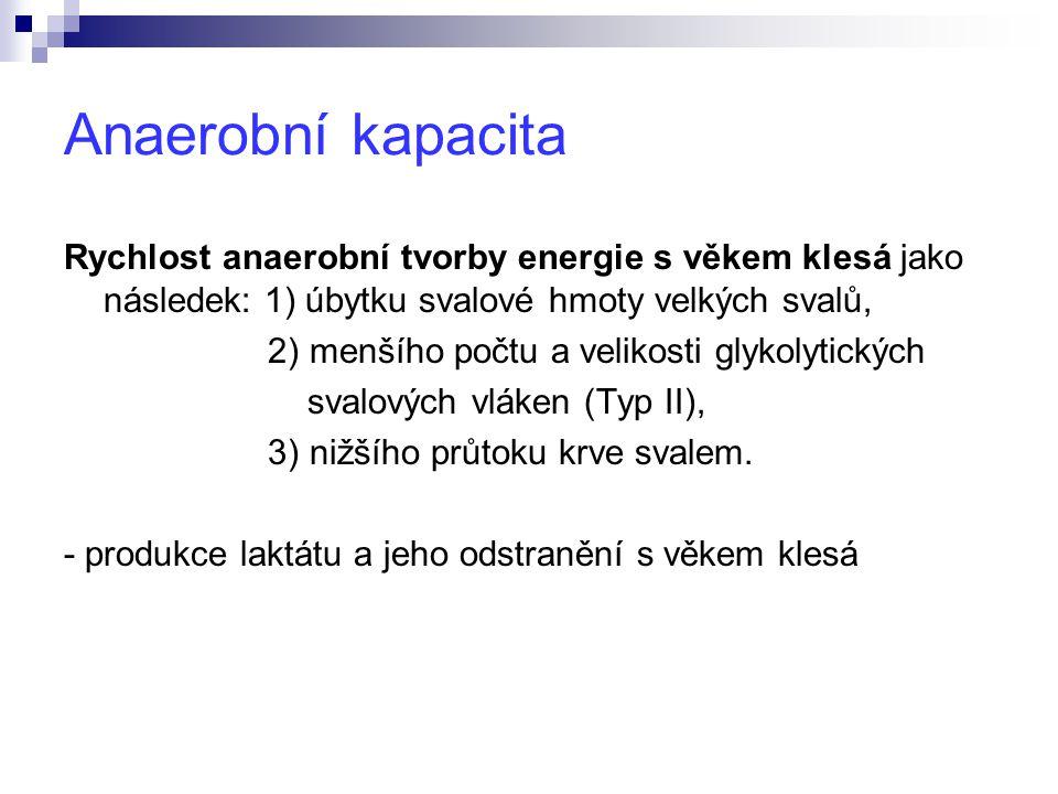 Anaerobní kapacita Rychlost anaerobní tvorby energie s věkem klesá jako následek: 1) úbytku svalové hmoty velkých svalů,