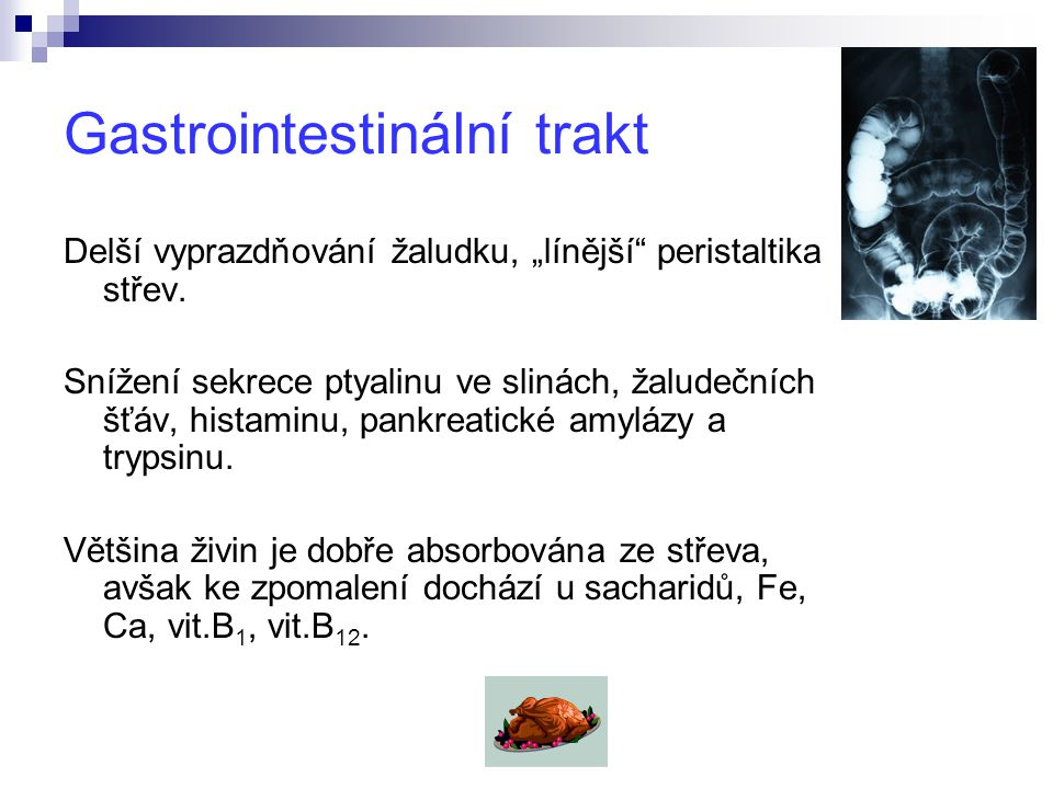 Gastrointestinální trakt