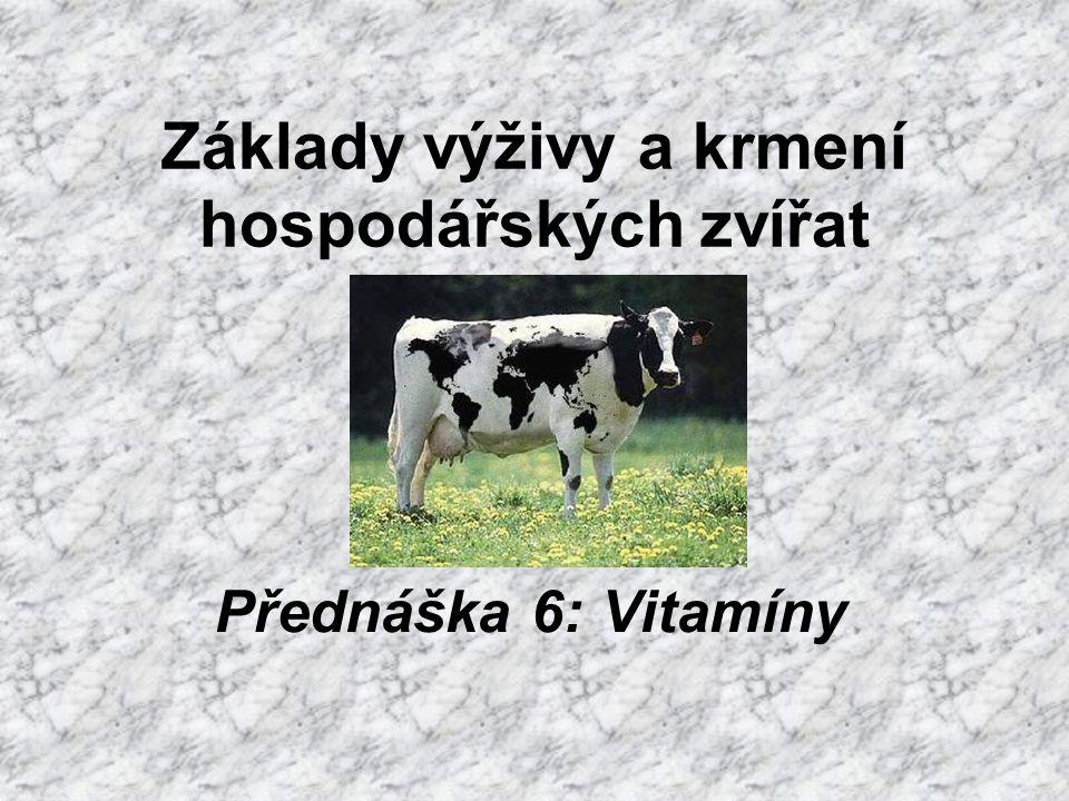Základy výživy a krmení hospodářských zvířat