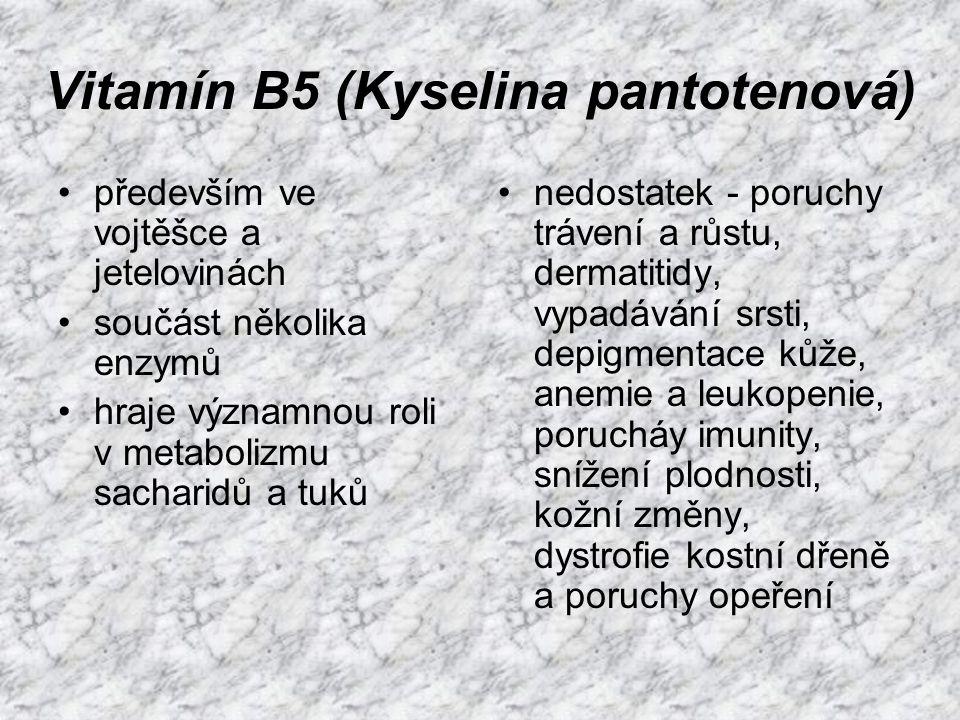 Vitamín B5 (Kyselina pantotenová)