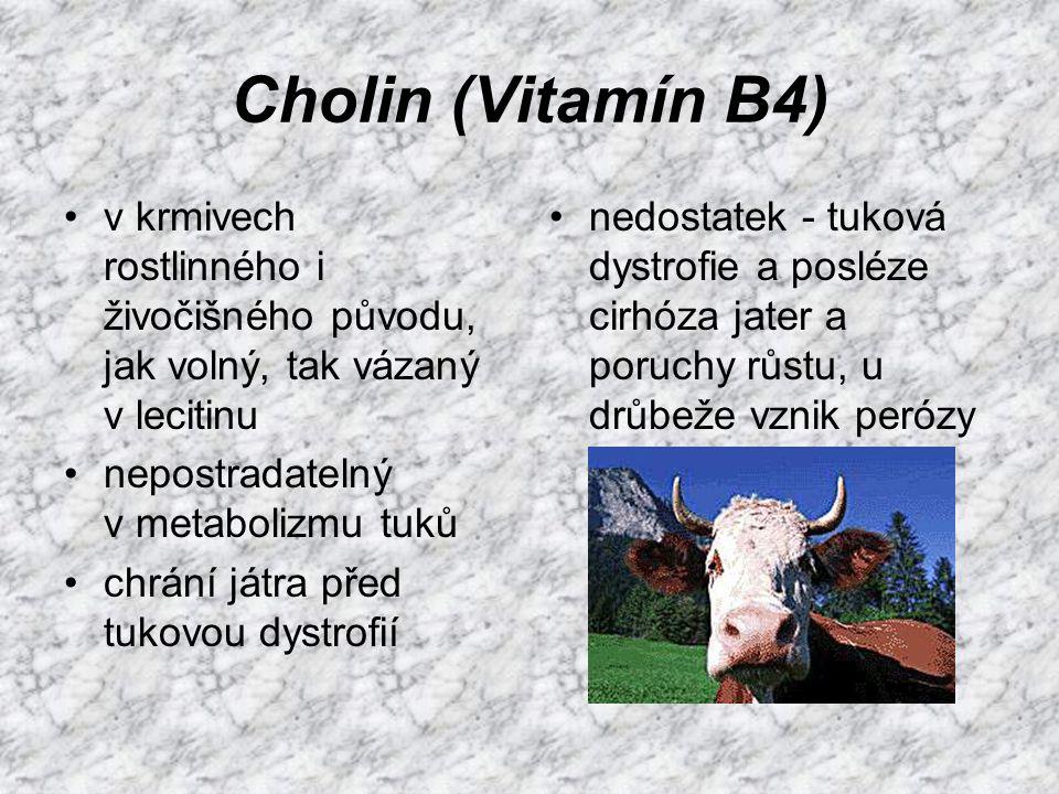 Cholin (Vitamín B4) v krmivech rostlinného i živočišného původu, jak volný, tak vázaný v lecitinu. nepostradatelný v metabolizmu tuků.