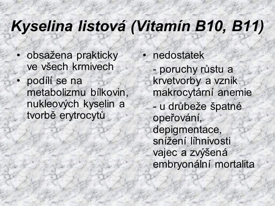 Kyselina listová (Vitamín B10, B11)
