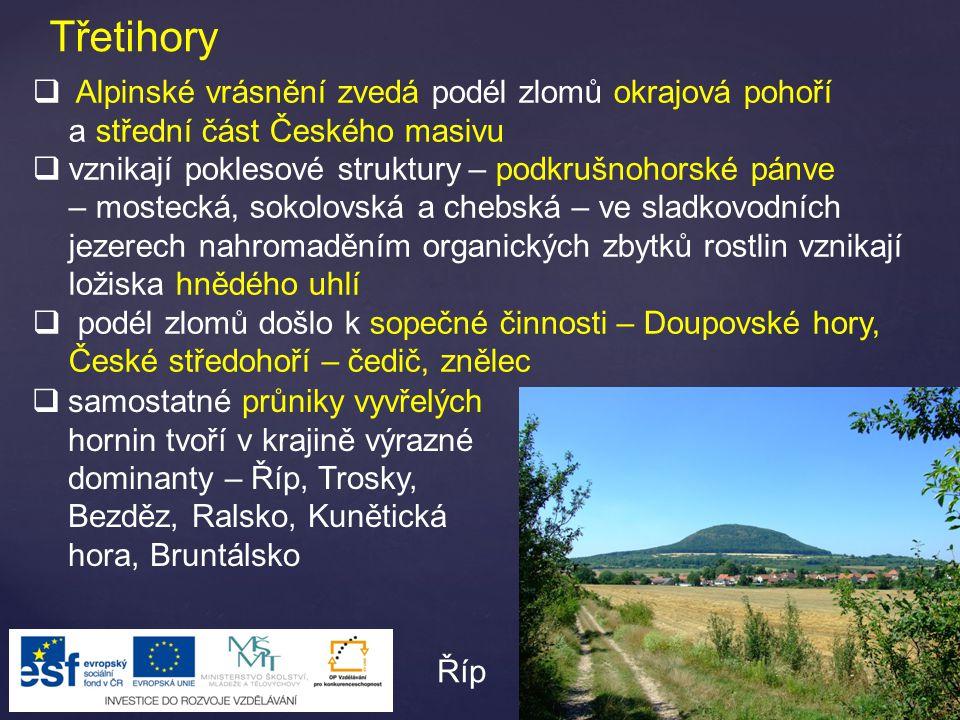 Třetihory Alpinské vrásnění zvedá podél zlomů okrajová pohoří a střední část Českého masivu.