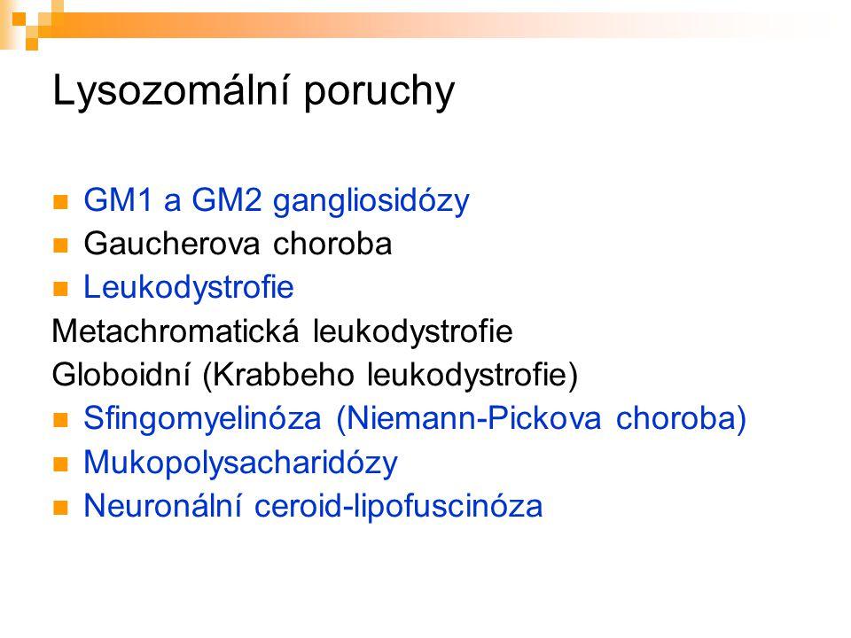 Lysozomální poruchy GM1 a GM2 gangliosidózy Gaucherova choroba