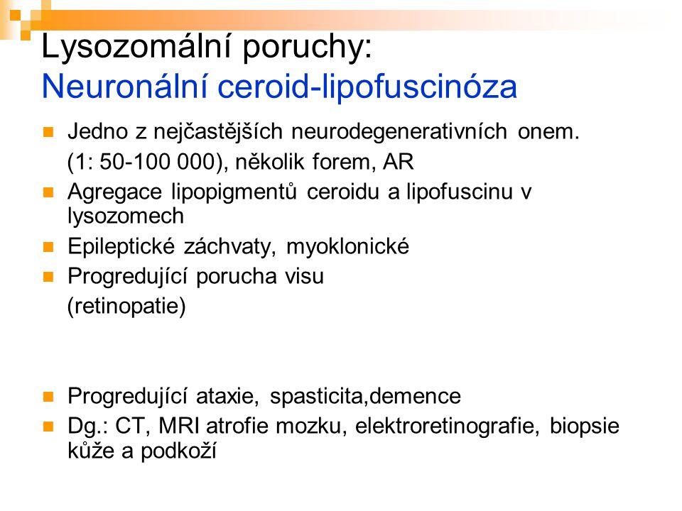 Lysozomální poruchy: Neuronální ceroid-lipofuscinóza