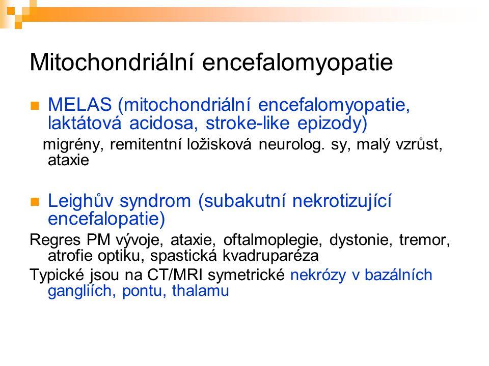 Mitochondriální encefalomyopatie