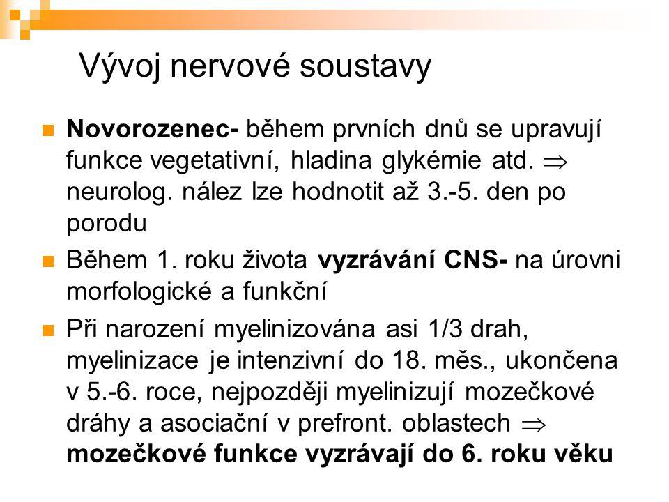 Vývoj nervové soustavy