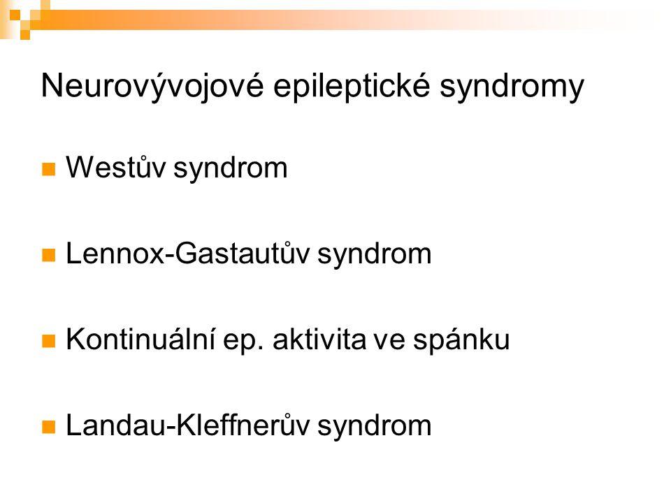 Neurovývojové epileptické syndromy