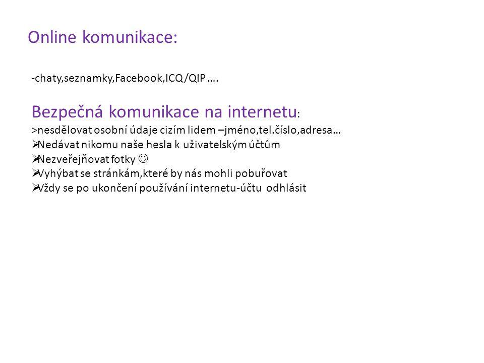 Bezpečná komunikace na internetu: