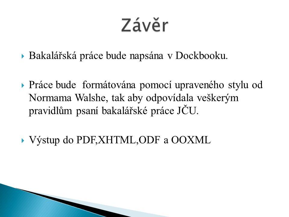 Závěr Bakalářská práce bude napsána v Dockbooku.