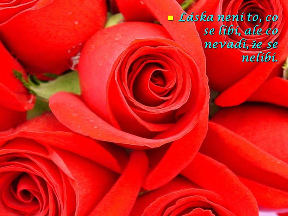 Láska není to, co se líbí, ale co nevadí, že se nelíbí.