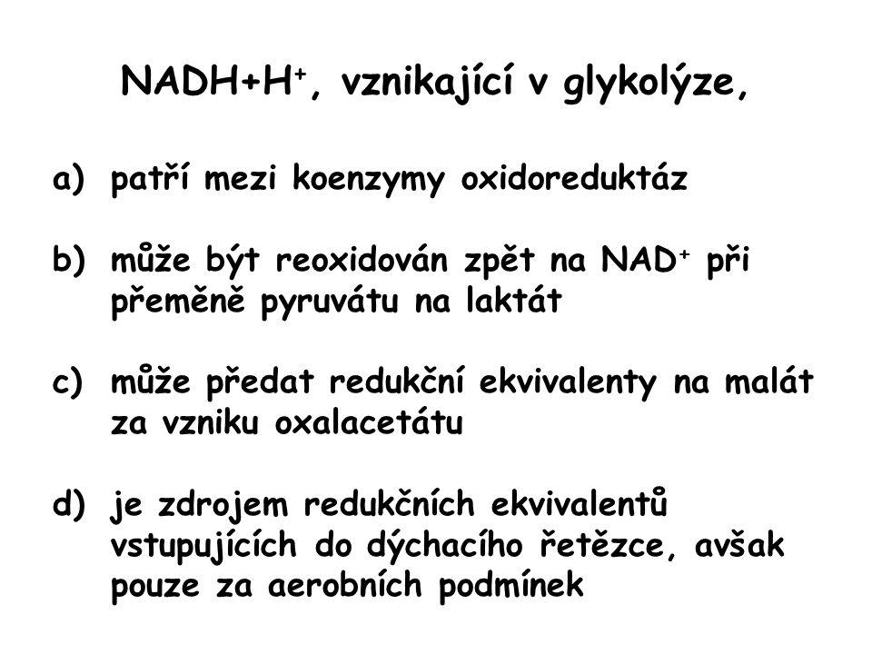 NADH+H+, vznikající v glykolýze,